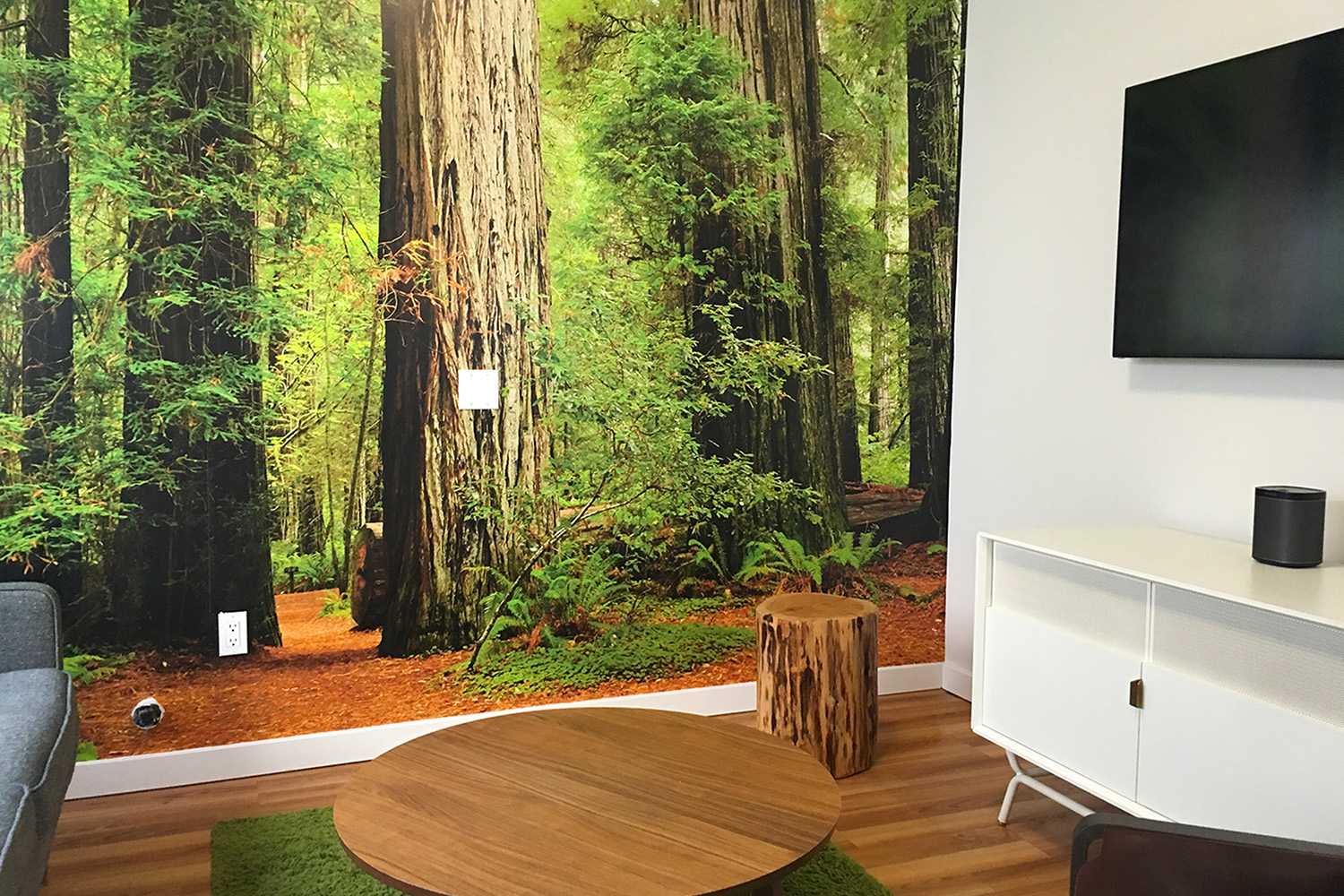 Custom Wall Murals For The Office, Home, Retail