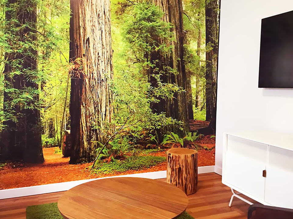 Custom Wall Murals for the Office, Home, Retail - Printed in San Diego
